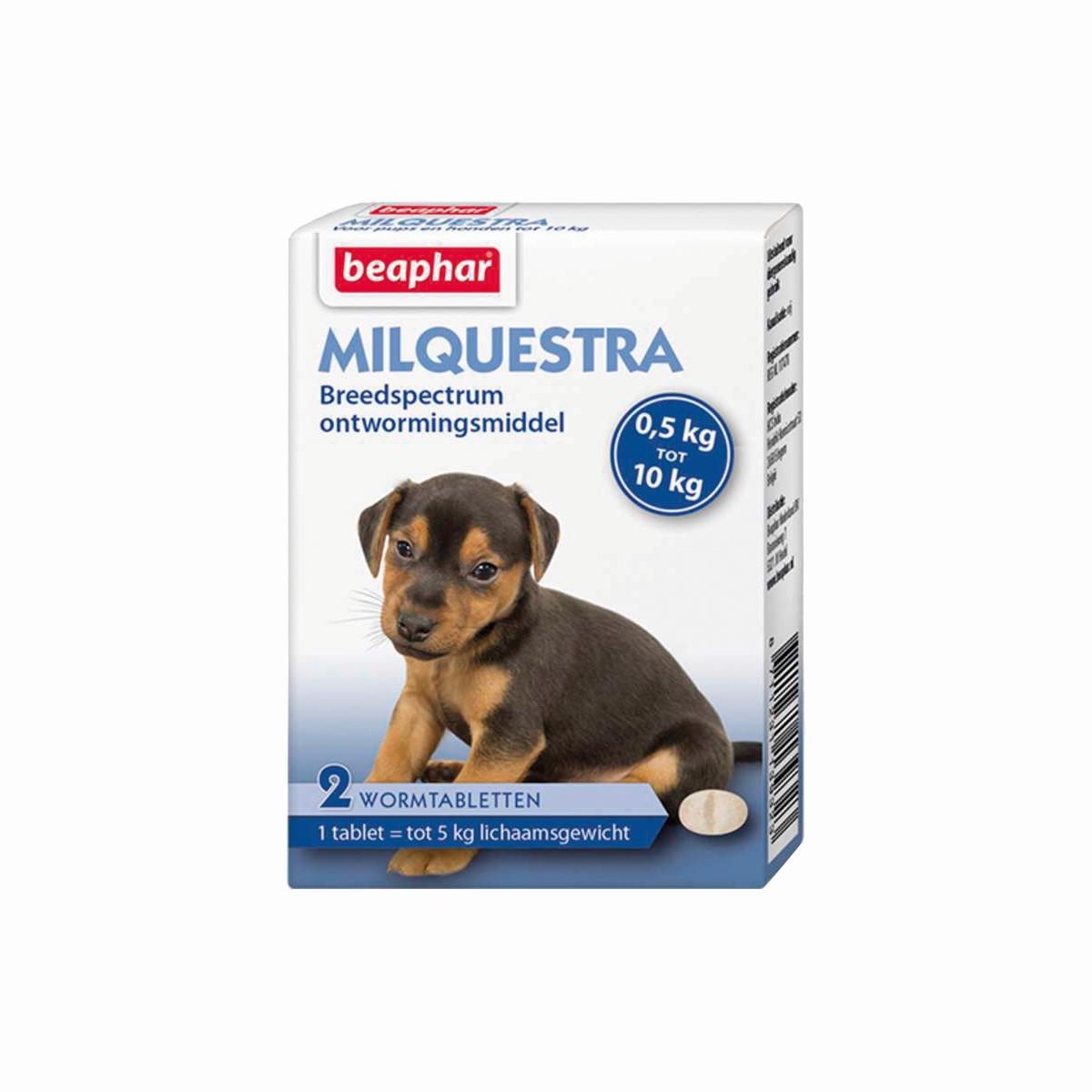Milquestra kleine hond / puppy meerkleurig 2 tabletten