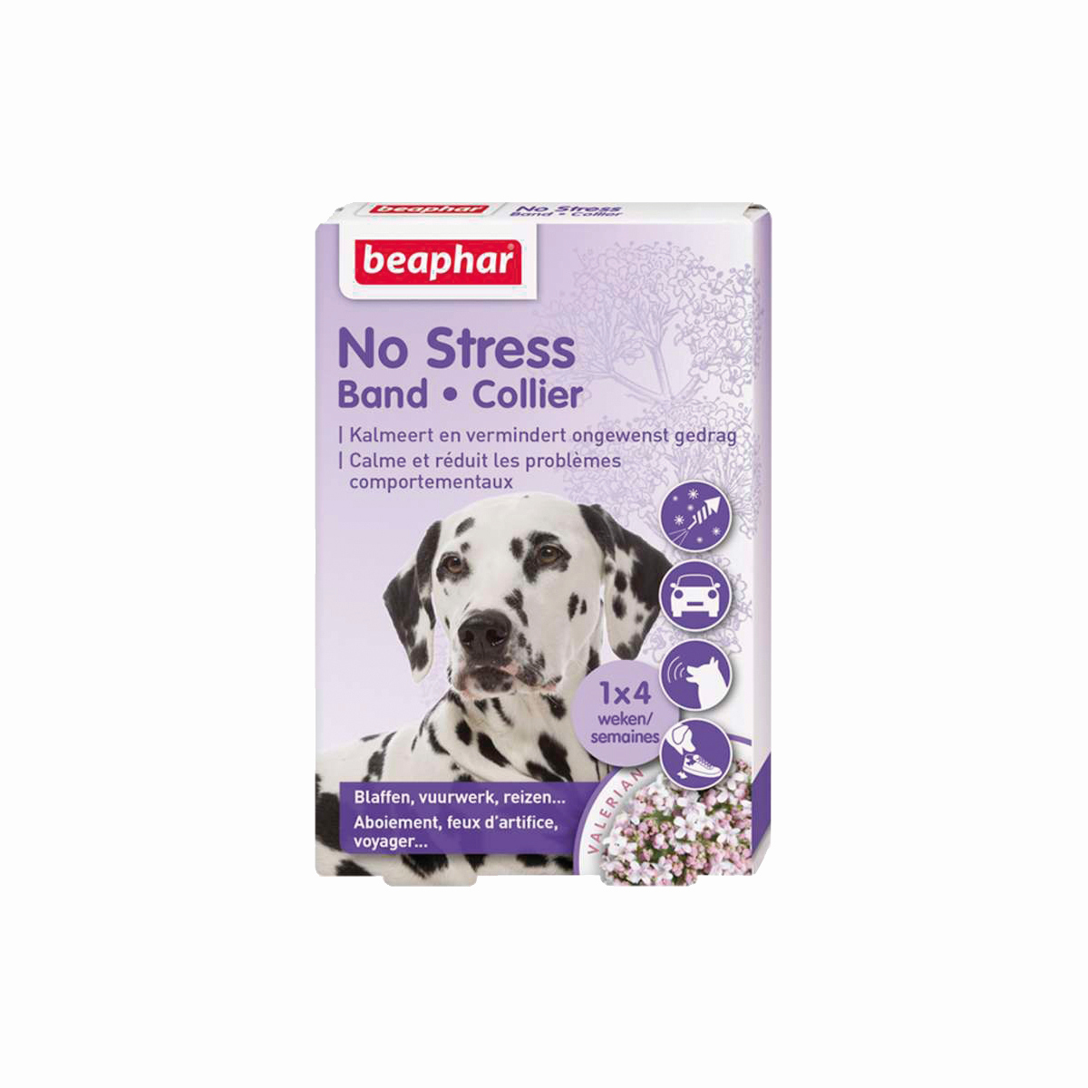 BEA NO STRESS BAND HOND 00001