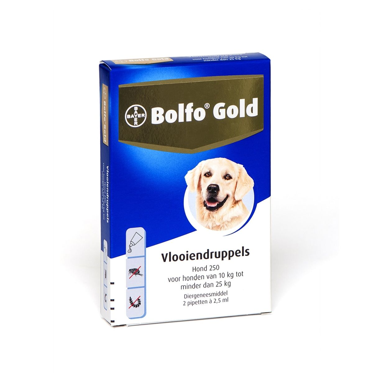 BA BOLFO GOLD HOND 250 2PIP 00001