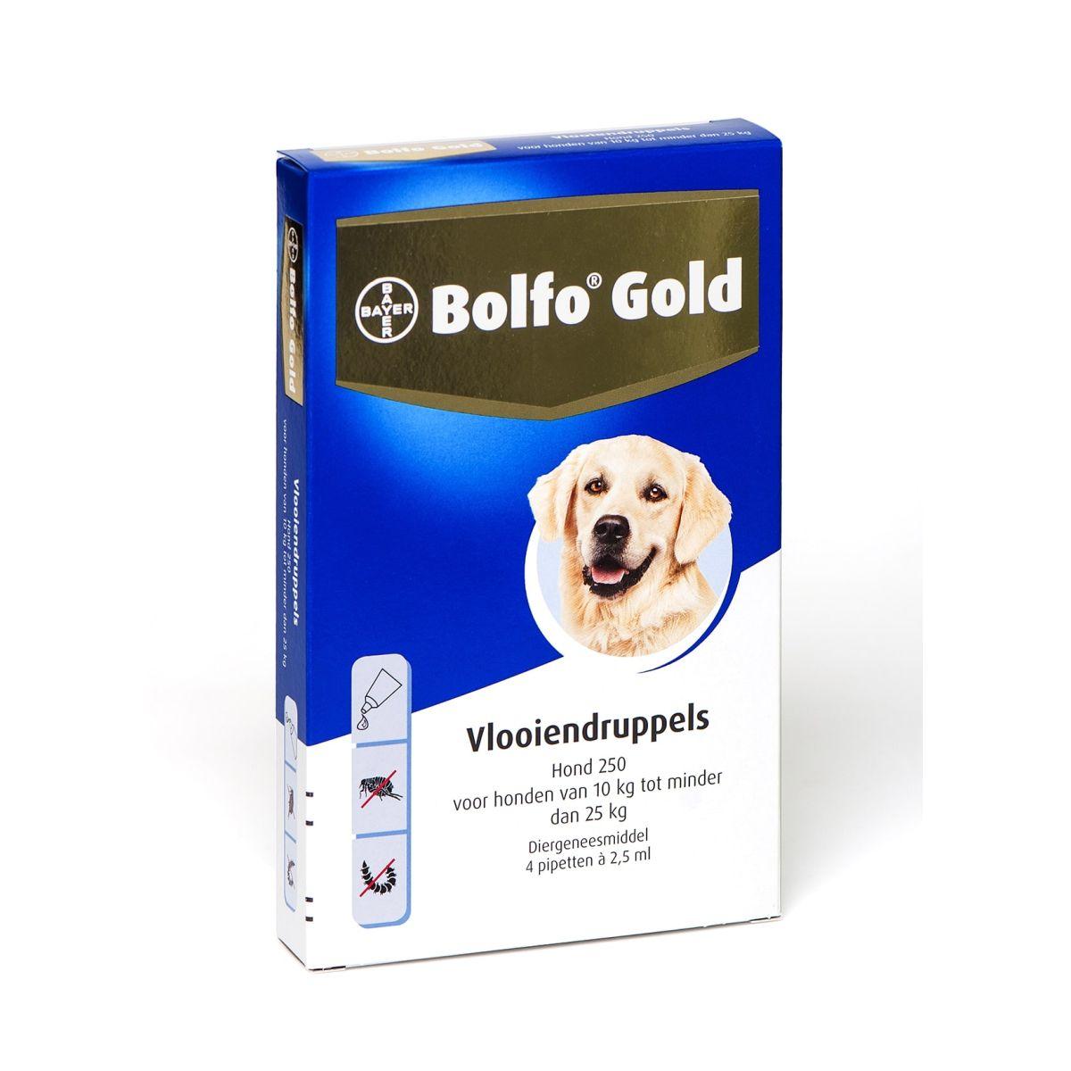 BA BOLFO GOLD HOND 250 4PIP 00001