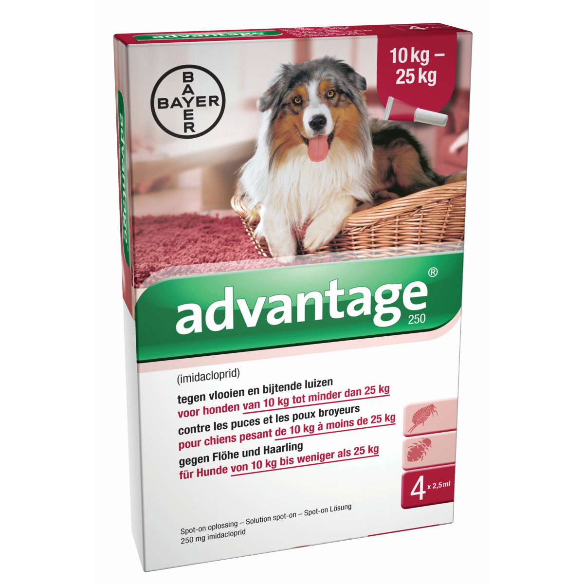 BA ADVANTAGE HOND 250 4PIP 00001