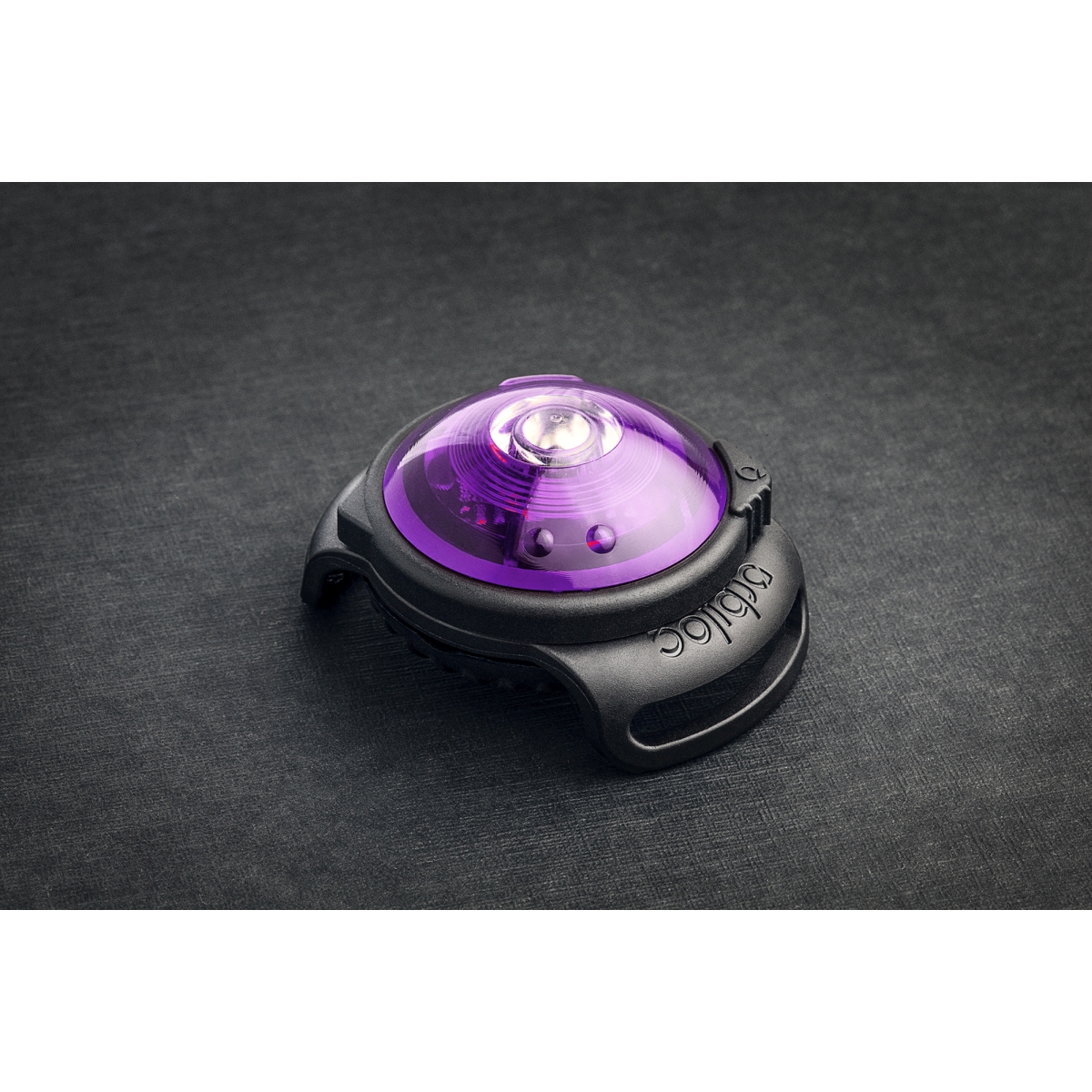 ORBILOC DOG DUAL PURPLE 00001
