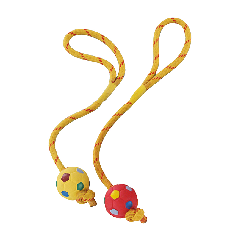 Dog toy bal en touw rubber