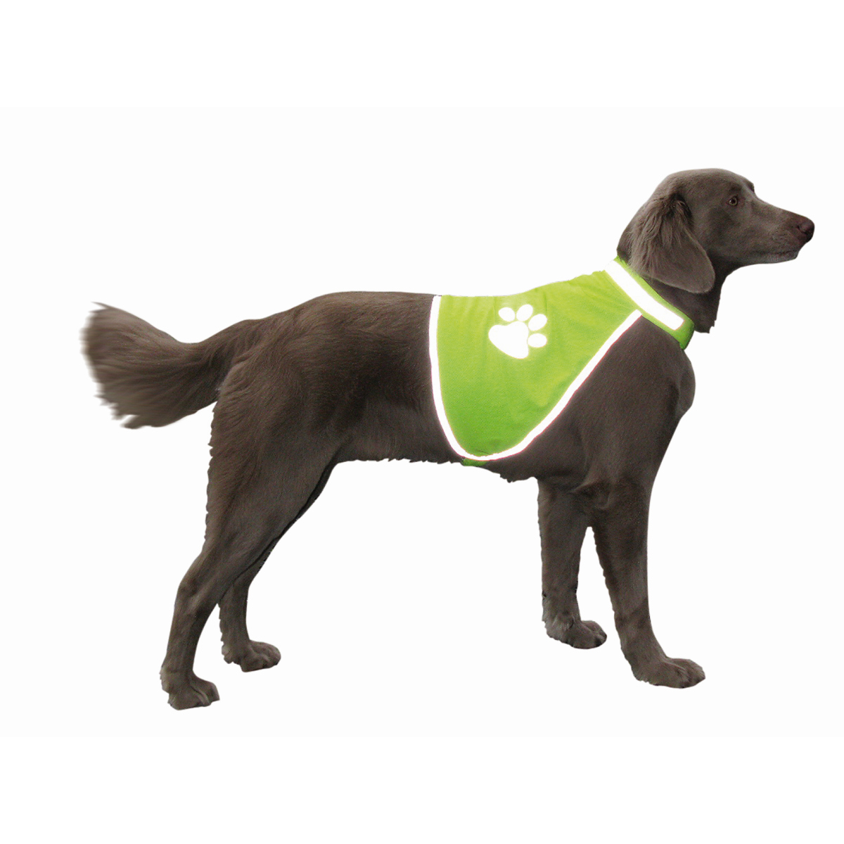 NB HONDEN SAFETY VEST S 00001