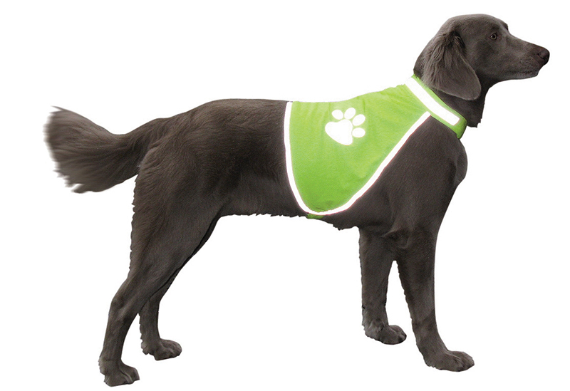 NB HONDEN SAFETY VEST L 00001