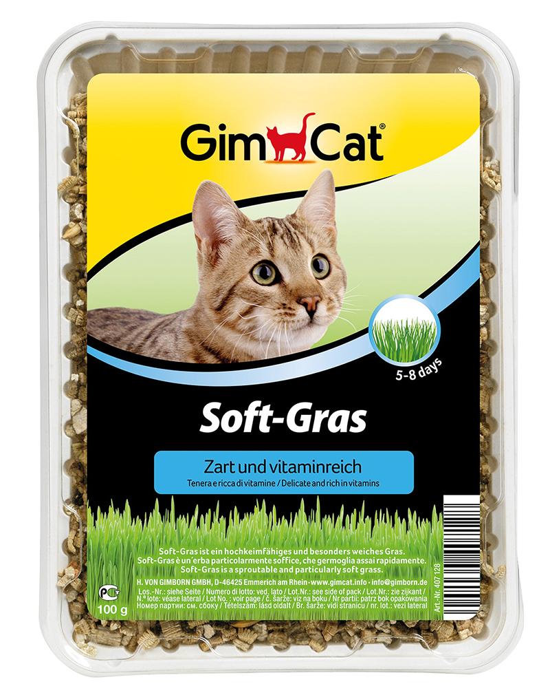Gimpet - kattengras soft meerkleurig 100 gr