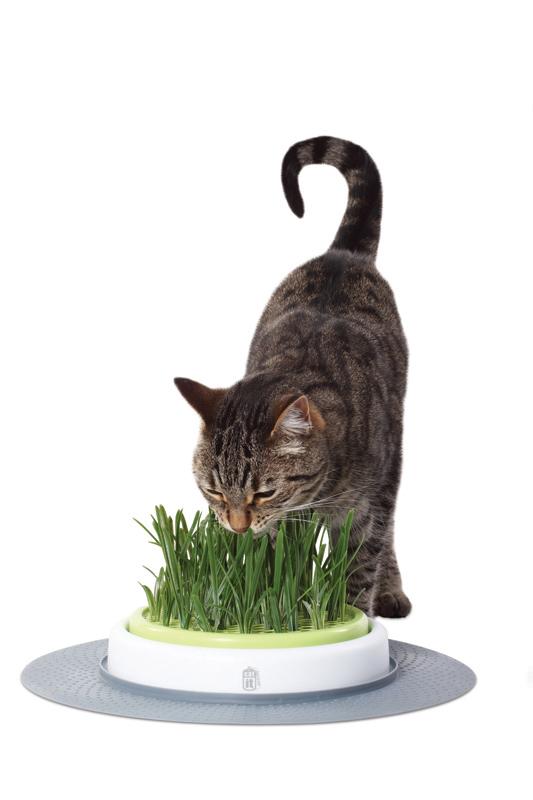 Gras garden wit/groen