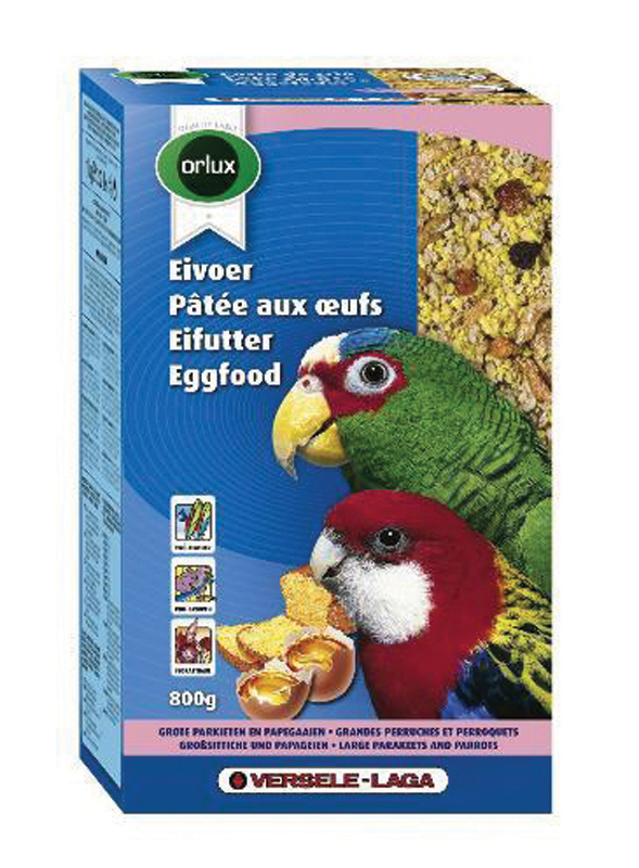 Grote parkiet&papegaai 800 gr