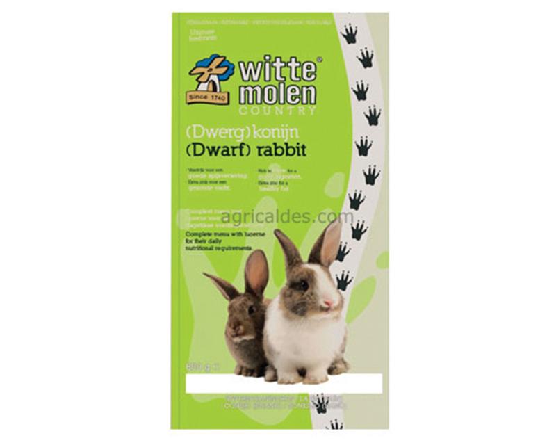 Witte molen - country (dwerg)konijn meerkleurig 4 kg