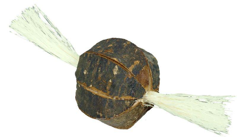 Knaagdier houten borstelbal bruin