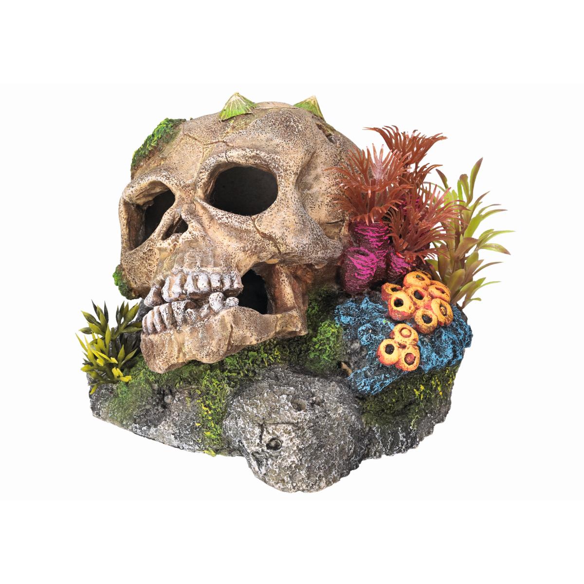 Aqua deco schedel meerkleurig