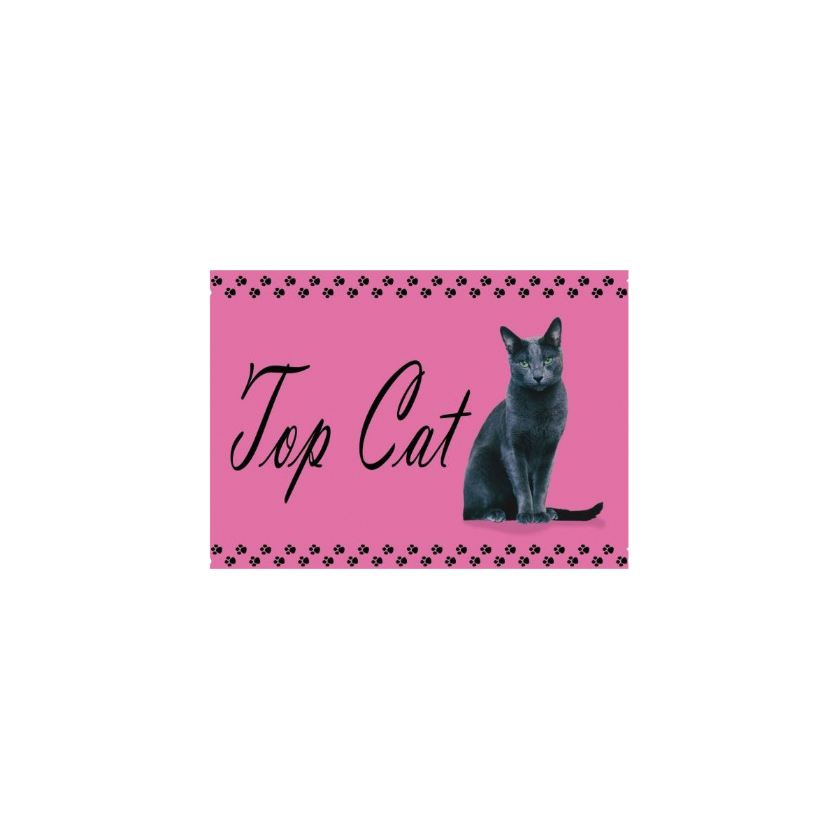 Studio pets - placemat top cat meerkleurig