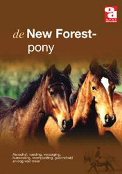 BOEK NEW FOREST PONY