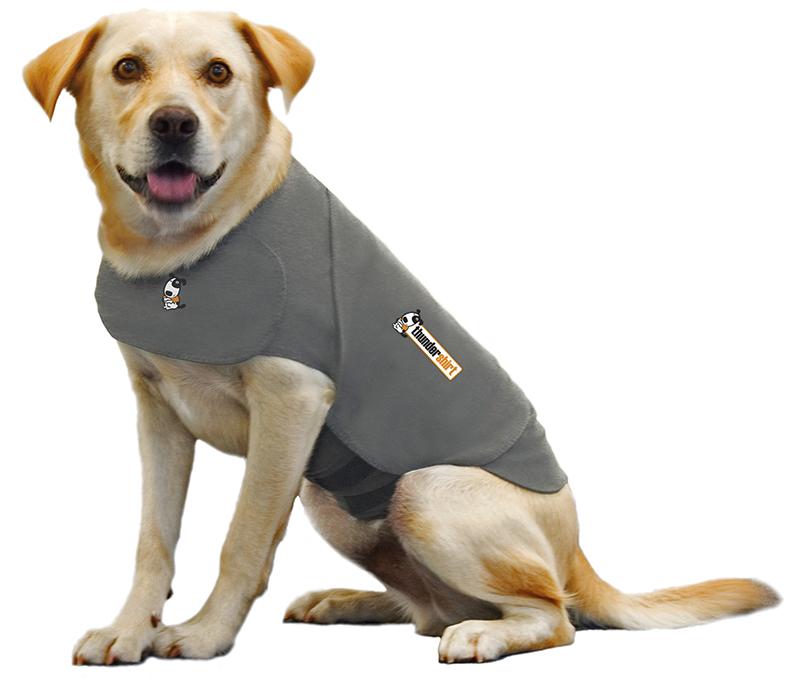Productafbeelding voor 'Hond grijs'