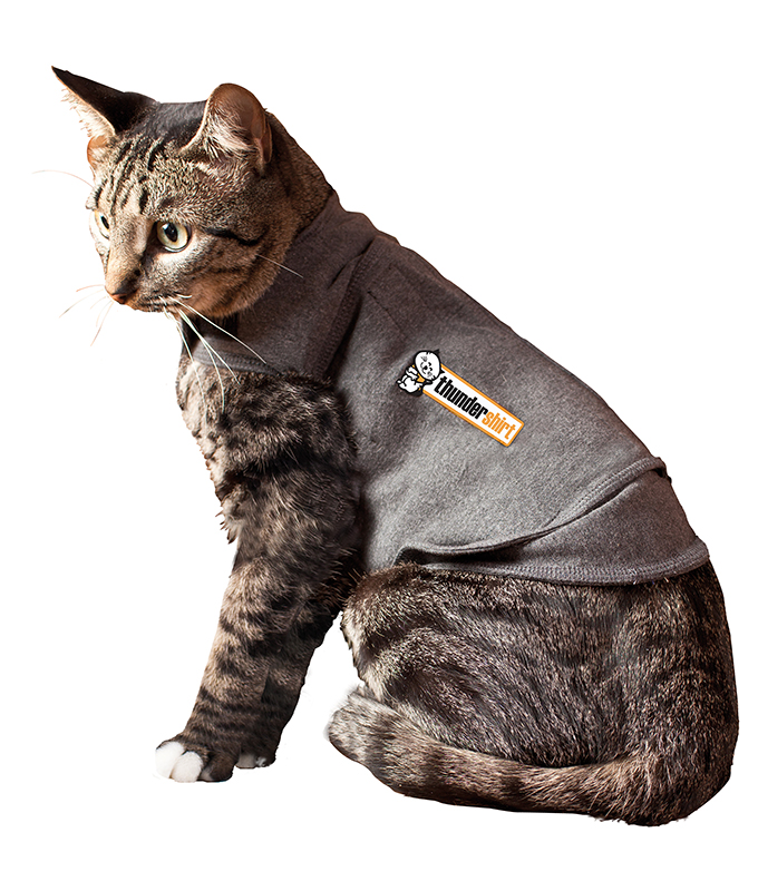 Productafbeelding voor 'Kat grijs'